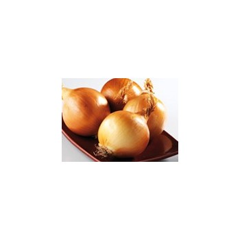Onion|