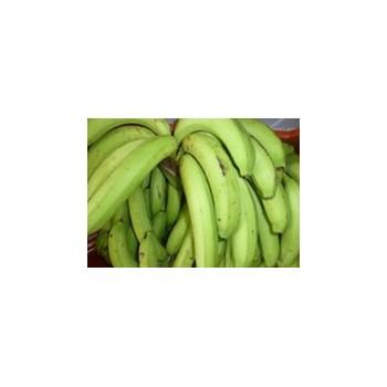 Banane verte