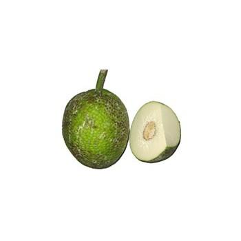 fruit à pain