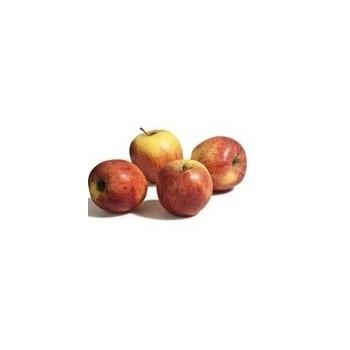 Pommes rouge kg
